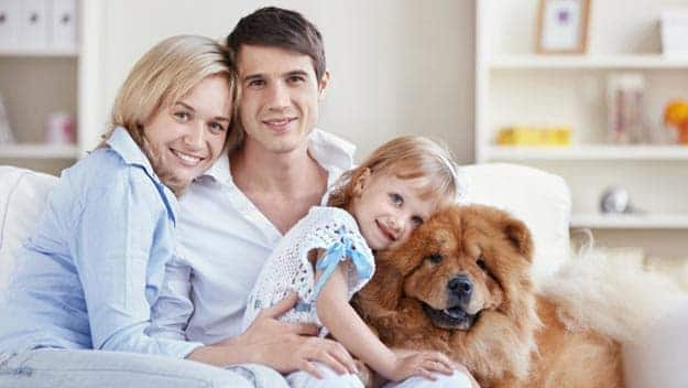 Wills & Trusts dog-young-family Direct Wills Malden Rushett